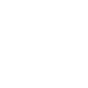 Web Development Client - Portmeirion Logo