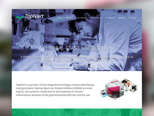 TopiVert Responsive Website