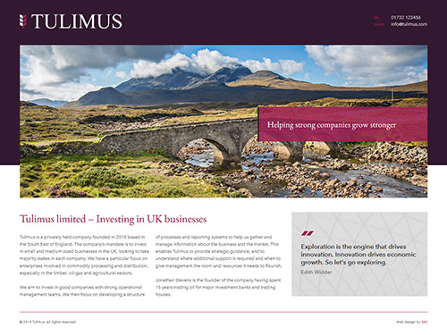 Tulimus Website